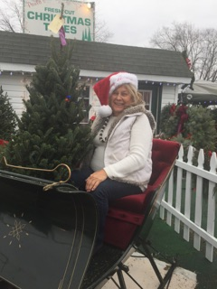 It's that wonderful tiime of the year--Paula's Christmas Trees